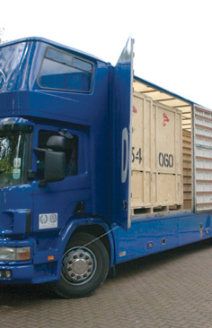 removals to israel image 2